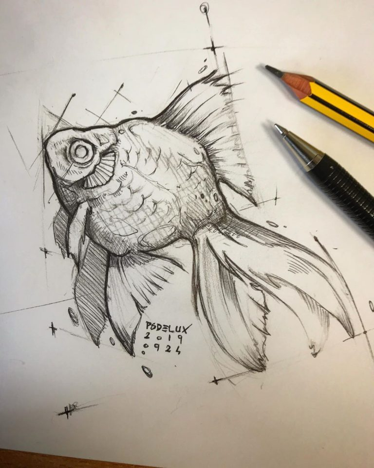 "@psdelux on Instagram: ""🐟 You know... the wishes!! #gold #fish #sketch"""