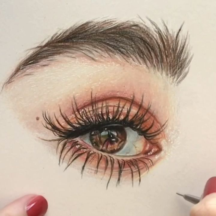 Color pencil drawing by Shannon Perrie (Perriewinkles)