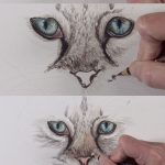 Learn how to draw cat eyes with colored pencils in this lesson. #coloredpencils ...